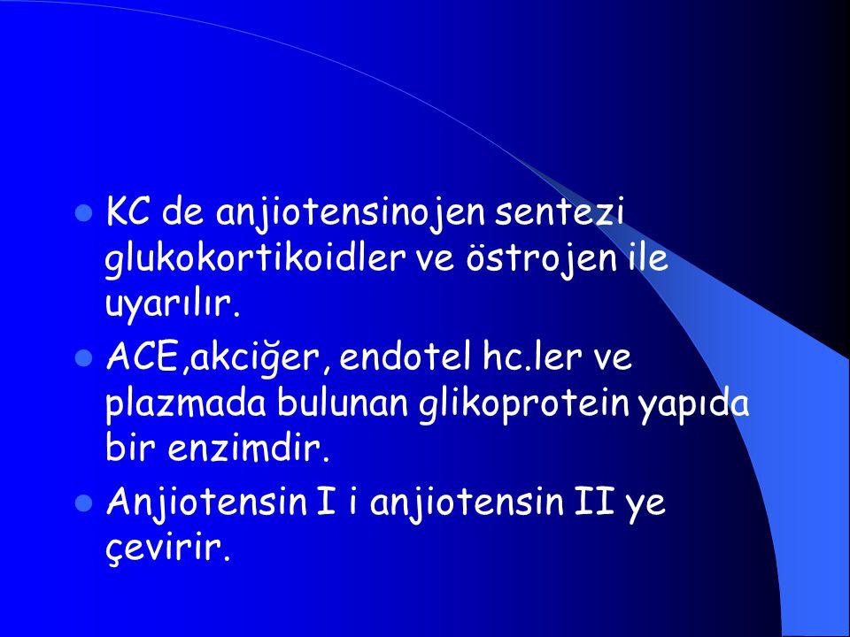 KC de anjiotensinojen sentezi glukokortikoidler ve östrojen ile uyarılır. ACE,akciğer, endotel hc.ler ve plazmada bulunan glikoprotein yapıda bir enzi