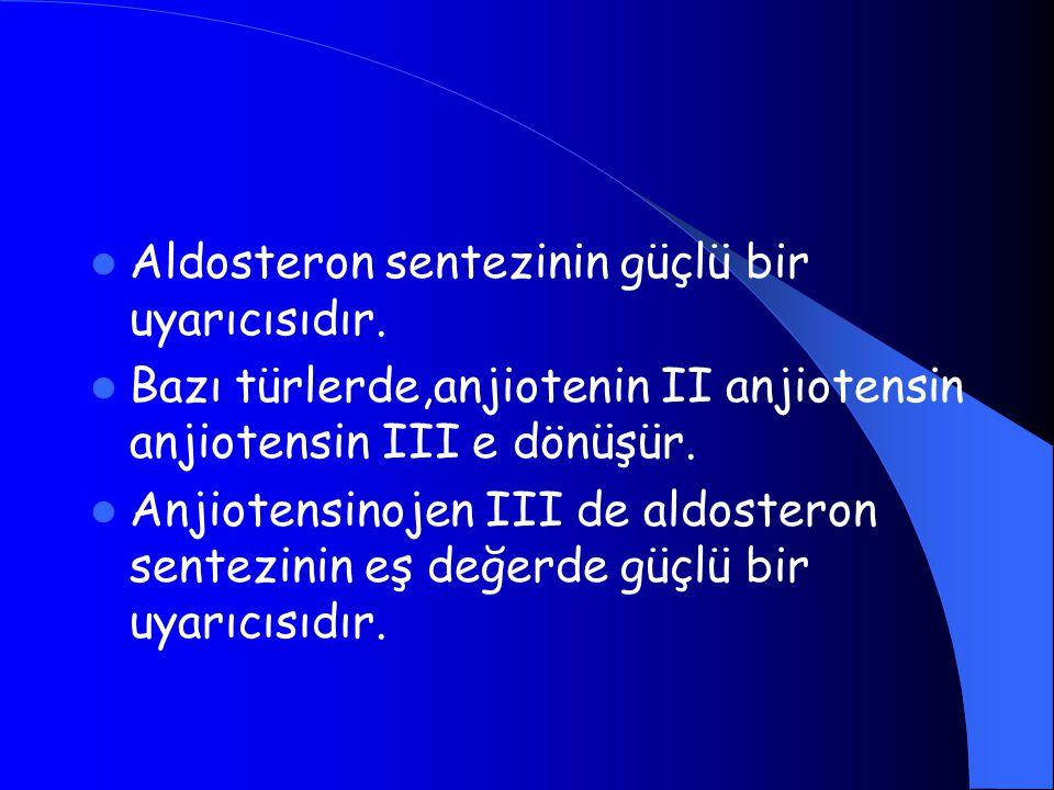 Aldosteron sentezinin güçlü bir uyarıcısıdır. Bazı türlerde,anjiotenin II anjiotensin anjiotensin III e dönüşür. Anjiotensinojen III de aldosteron sen