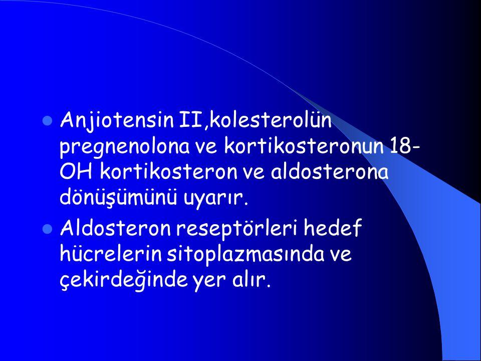 Anjiotensin II,kolesterolün pregnenolona ve kortikosteronun 18- OH kortikosteron ve aldosterona dönüşümünü uyarır. Aldosteron reseptörleri hedef hücre