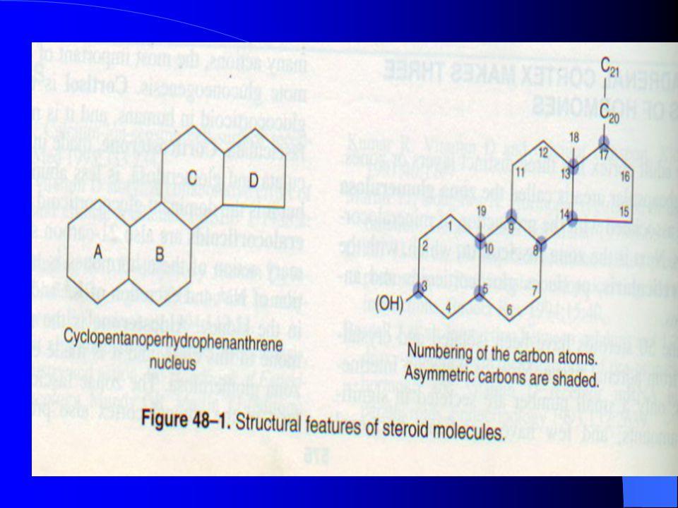 Glukokortikoidler 21 C'lu Mineralokortikoidler Androjenler  19 C'lu Östrojenler  18 C'lu 10.