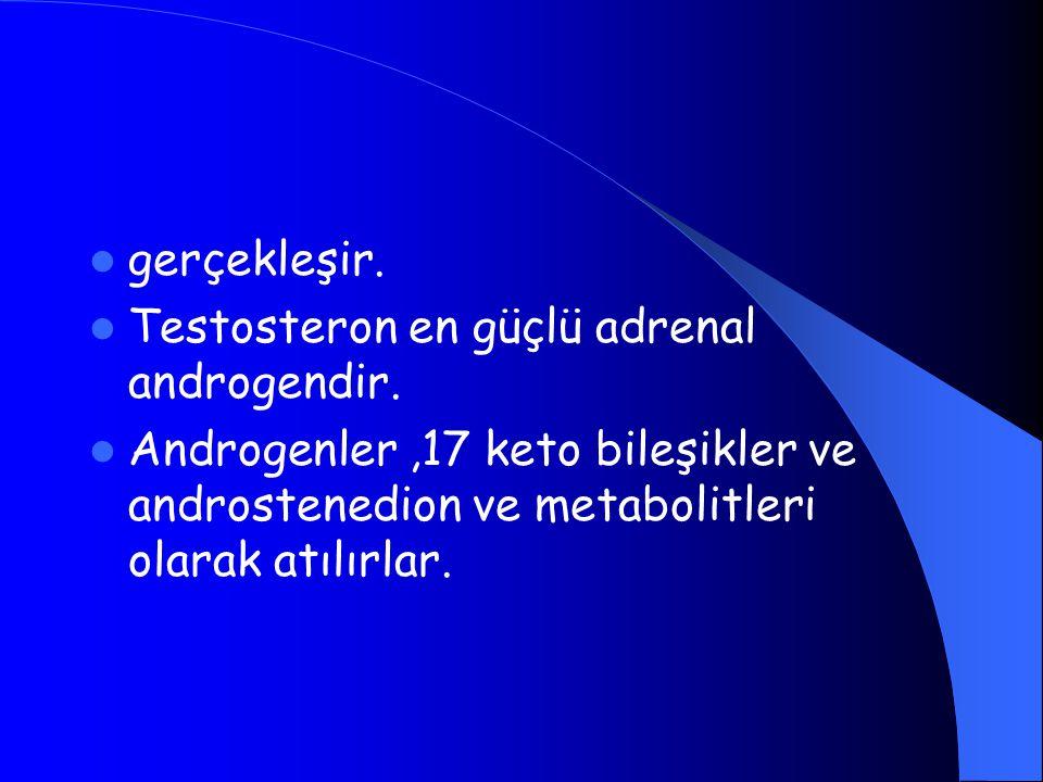 gerçekleşir. Testosteron en güçlü adrenal androgendir. Androgenler,17 keto bileşikler ve androstenedion ve metabolitleri olarak atılırlar.
