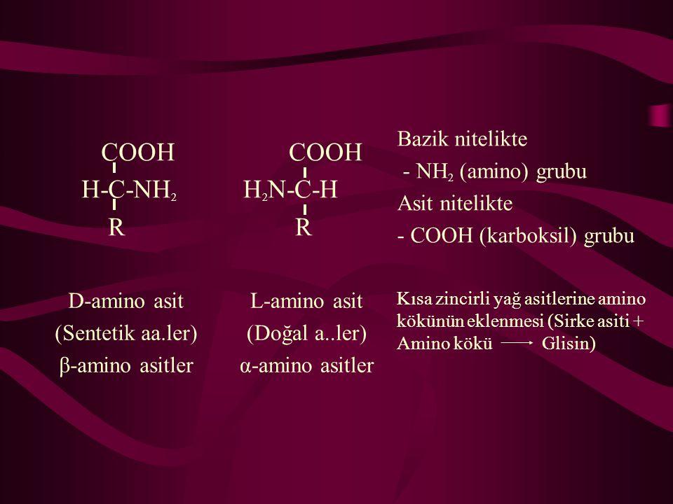 COOH H-C-NH 2 R COOH H 2 N-C-H R Bazik nitelikte - NH 2 (amino) grubu Asit nitelikte - COOH (karboksil) grubu D-amino asit (Sentetik aa.ler) β-amino asitler L-amino asit (Doğal a..ler) α-amino asitler Kısa zincirli yağ asitlerine amino kökünün eklenmesi (Sirke asiti + Amino kökü Glisin)