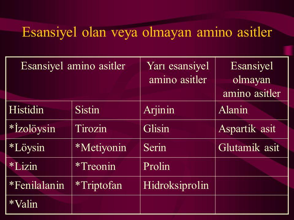Esansiyel olan veya olmayan amino asitler Esansiyel amino asitlerYarı esansiyel amino asitler Esansiyel olmayan amino asitler HistidinSistinArjininAlanin *İzolöysinTirozinGlisinAspartik asit *Löysin*MetiyoninSerinGlutamik asit *Lizin*TreoninProlin *Fenilalanin*TriptofanHidroksiprolin *Valin