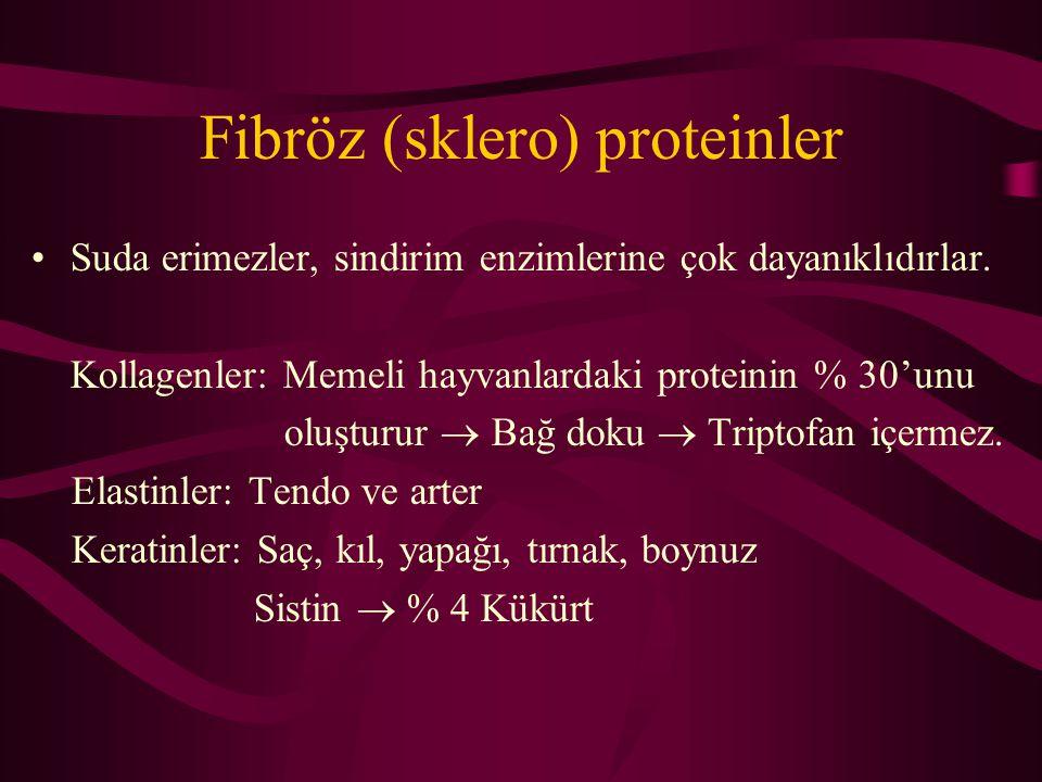 Fibröz (sklero) proteinler Suda erimezler, sindirim enzimlerine çok dayanıklıdırlar.