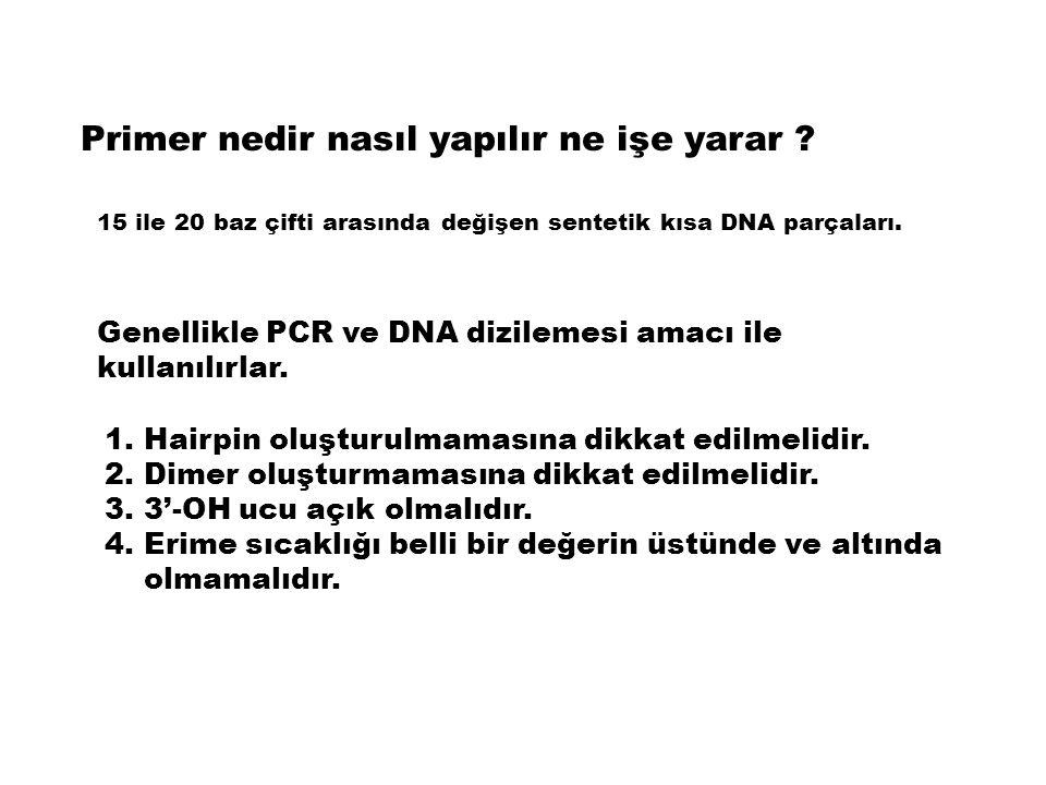 Primer nedir nasıl yapılır ne işe yarar ? 15 ile 20 baz çifti arasında değişen sentetik kısa DNA parçaları. Genellikle PCR ve DNA dizilemesi amacı ile