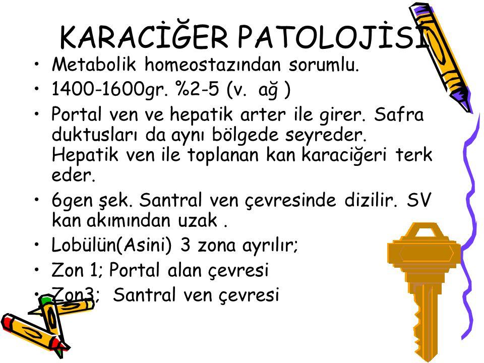 SİROZ Nedenleri; 1) Alkol 2) Kronik hep 3) Biliyer hast 4) Fe aşırı yükü(Hemokromatoz) 5) Wilson sirozu (bakır metabolizma bozukluğu) 6) Alfa -1- antitripsin yetm 7) Kriptojenik