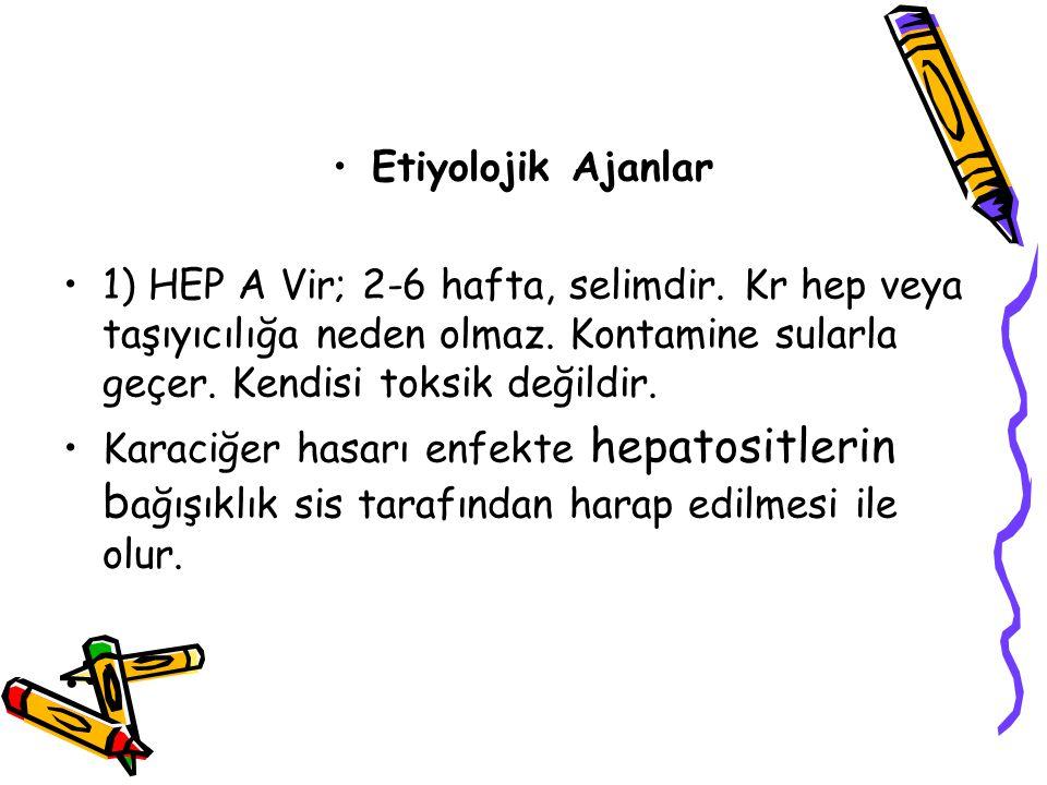 Etiyolojik Ajanlar 1) HEP A Vir; 2-6 hafta, selimdir. Kr hep veya taşıyıcılığa neden olmaz. Kontamine sularla geçer. Kendisi toksik değildir. Karaciğe