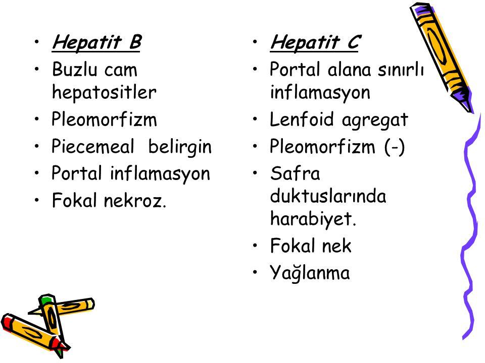 Hepatit B Buzlu cam hepatositler Pleomorfizm Piecemeal belirgin Portal inflamasyon Fokal nekroz. Hepatit C Portal alana sınırlı inflamasyon Lenfoid ag
