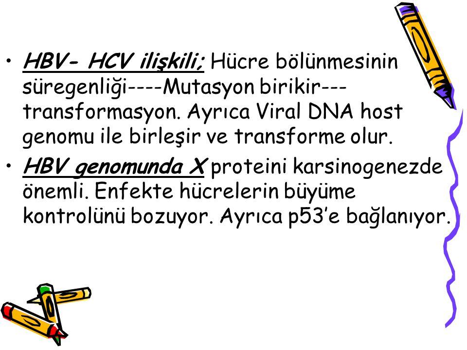 HBV- HCV ilişkili; Hücre bölünmesinin süregenliği----Mutasyon birikir--- transformasyon. Ayrıca Viral DNA host genomu ile birleşir ve transforme olur.