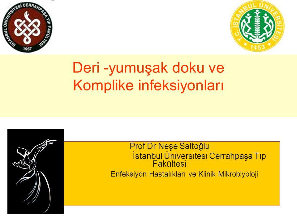 Deri -yumuşak doku ve Komplike infeksiyonları Prof Dr Neşe Saltoğlu İstanbul Üniversitesi Cerrahpaşa Tıp Fakültesi Enfeksiyon Hastalıkları ve Klinik Mikrobiyoloji