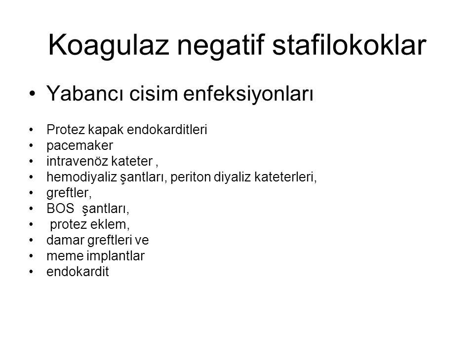 Koagulaz negatif stafilokoklar Yabancı cisim enfeksiyonları Protez kapak endokarditleri pacemaker intravenöz kateter, hemodiyaliz şantları, periton di
