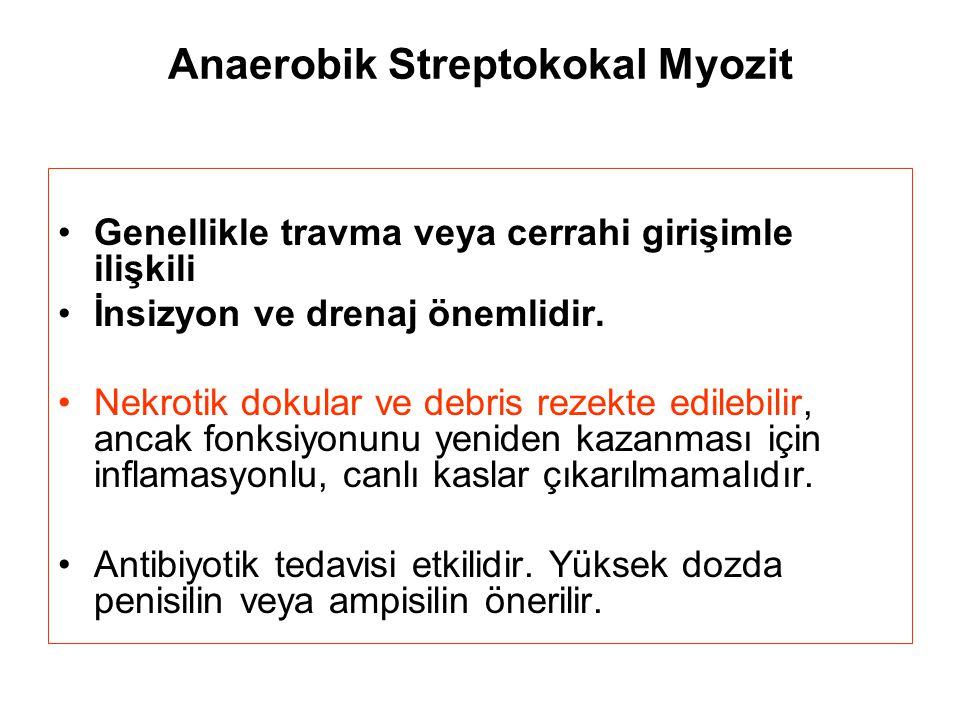 Anaerobik Streptokokal Myozit Genellikle travma veya cerrahi girişimle ilişkili İnsizyon ve drenaj önemlidir. Nekrotik dokular ve debris rezekte edile