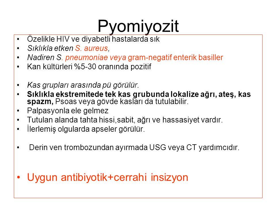 Pyomiyozit Özelikle HIV ve diyabetli hastalarda sık Sıklıkla etken S.