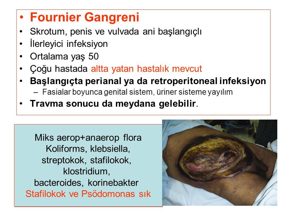Fournier Gangreni Skrotum, penis ve vulvada ani başlangıçlı İlerleyici infeksiyon Ortalama yaş 50 Çoğu hastada altta yatan hastalık mevcut Başlangıçta perianal ya da retroperitoneal infeksiyon –Fasialar boyunca genital sistem, üriner sisteme yayılım Travma sonucu da meydana gelebilir.