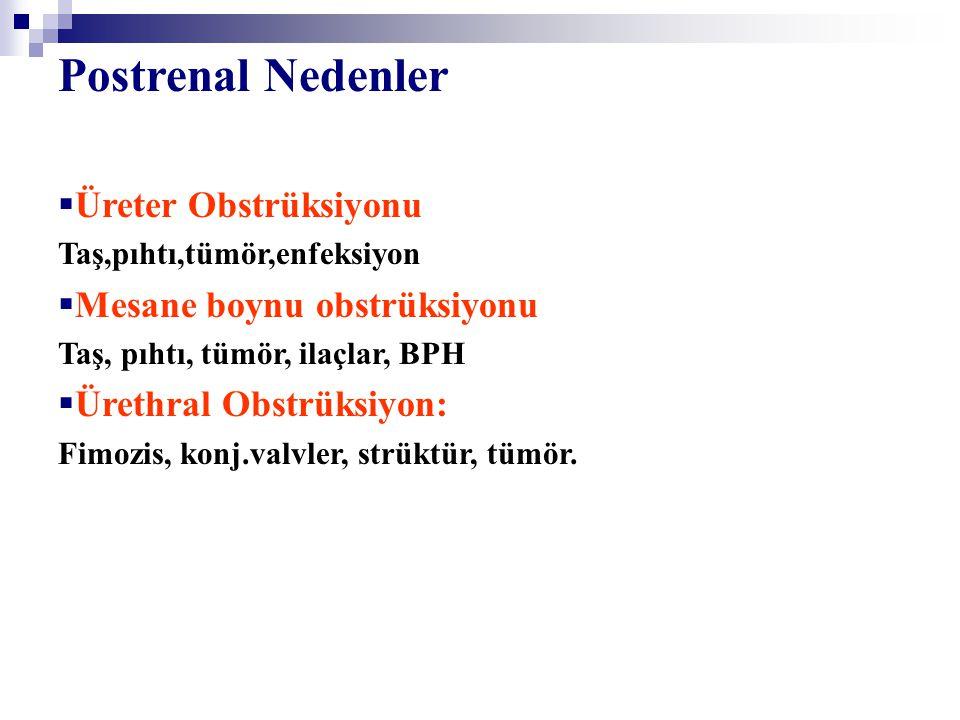 ABY tipleri Liano et al. Kidny İnternational 1998 Suppl. 66