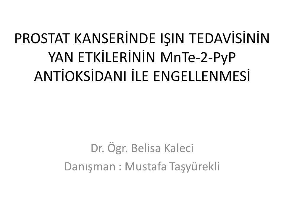 PROSTAT KANSERİNDE IŞIN TEDAVİSİNİN YAN ETKİLERİNİN MnTe-2-PyP ANTİOKSİDANI İLE ENGELLENMESİ Dr. Ögr. Belisa Kaleci Danışman : Mustafa Taşyürekli