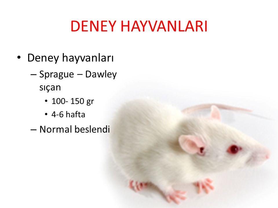 DENEY HAYVANLARI Deney hayvanları – Sprague – Dawley sıçan 100- 150 gr 4-6 hafta – Normal beslendi