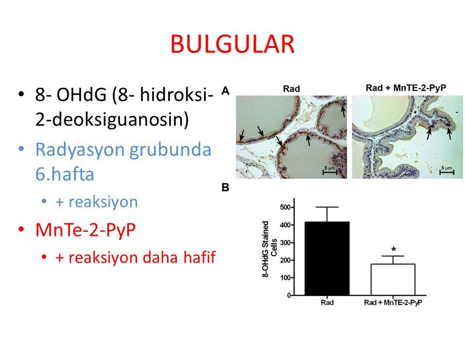 BULGULAR 8- OHdG (8- hidroksi- 2-deoksiguanosin) Radyasyon grubunda 6.hafta + reaksiyon MnTe-2-PyP + reaksiyon daha hafif