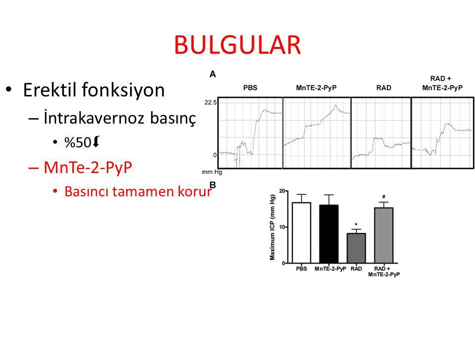 BULGULAR Erektil fonksiyon – İntrakavernoz basınç %50  – MnTe-2-PyP Basıncı tamamen korur