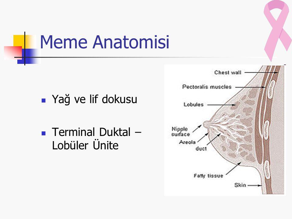 Lenfatik Drenaj Aksiller Drenaj İnternal Mamariyan Drenaj