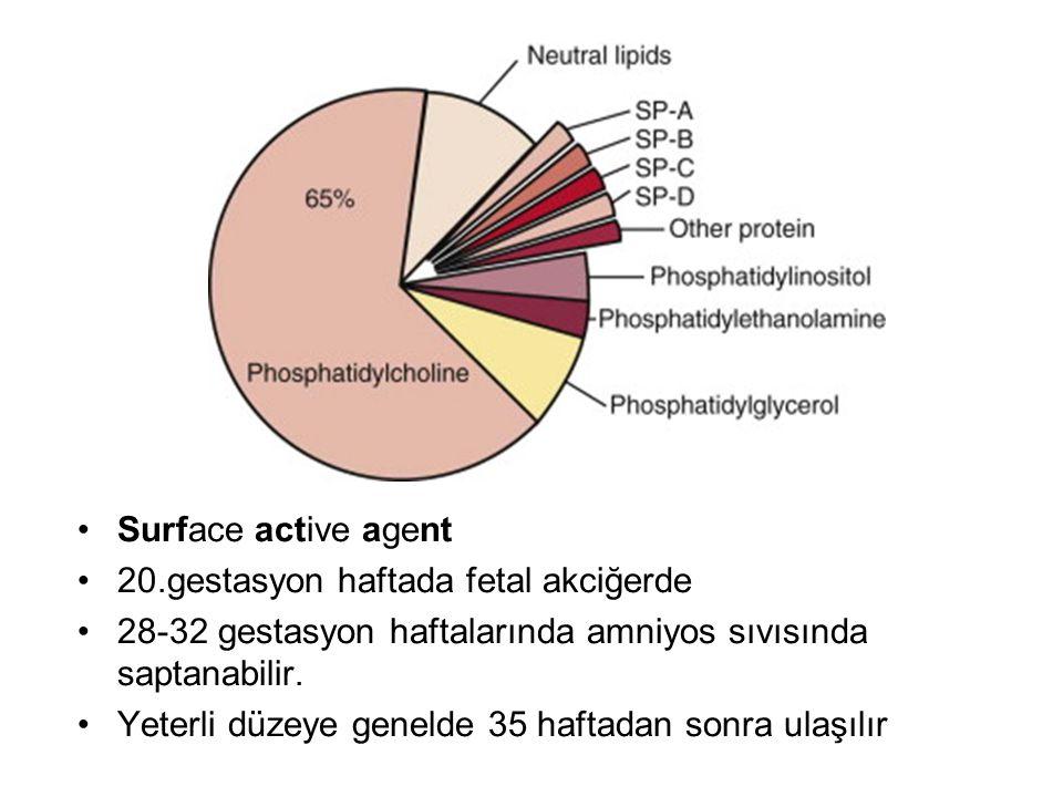 Surface active agent 20.gestasyon haftada fetal akciğerde 28-32 gestasyon haftalarında amniyos sıvısında saptanabilir. Yeterli düzeye genelde 35 hafta
