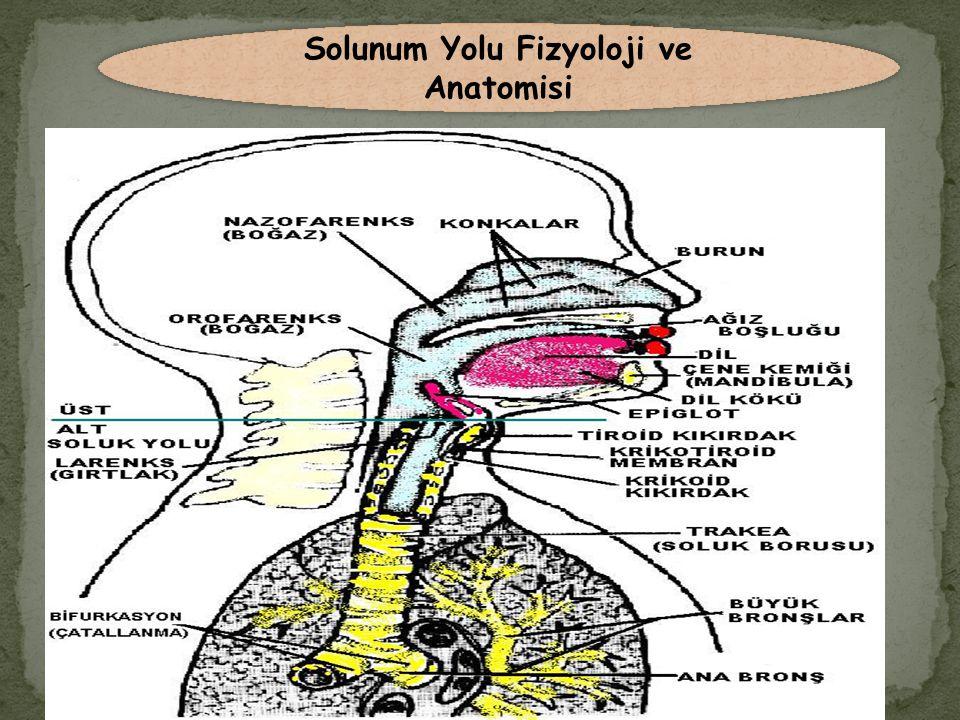 Açık Sistem Aspirasyon Malzemeler: 1.Aspiratör 2.Steril aspirasyon katateri ( bebekler için: 5-8 Fr, çocuklar:8-10 Fr, yetişkinler için: 12-18 Fr ) 3.Steril eldiven 4.Serum fizyolojik solüsyonu 5.Steril şişe