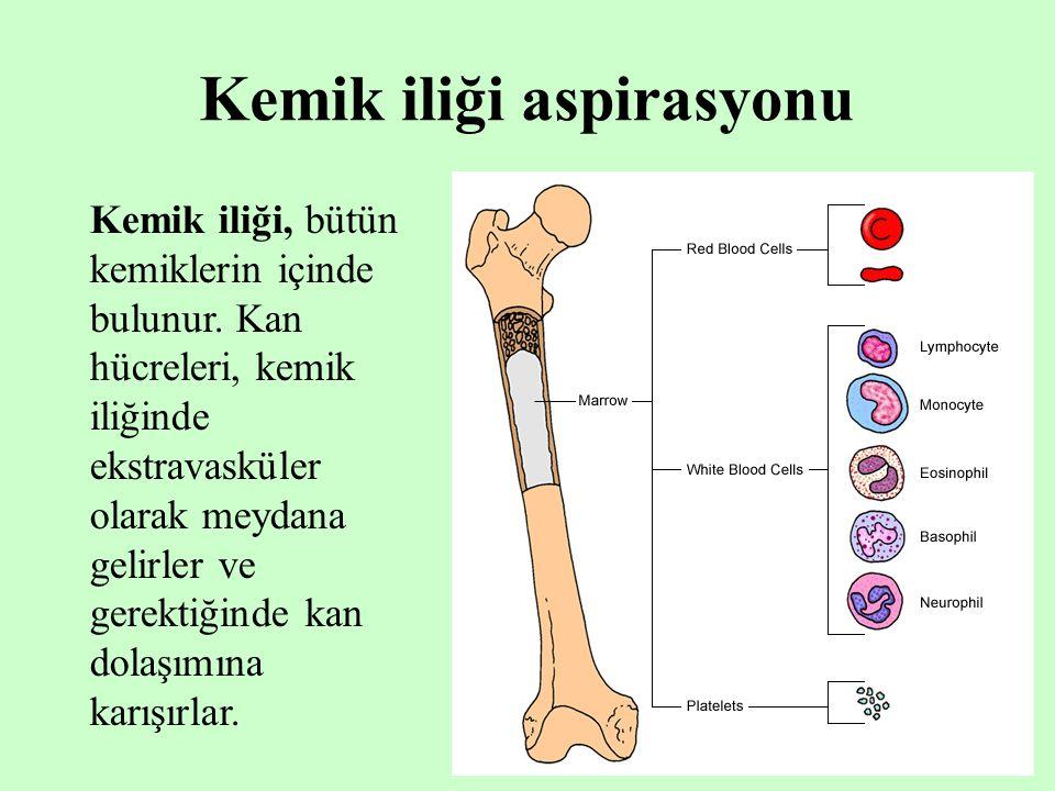 10 Kemik iliği aspirasyonu Kemik iliği, bütün kemiklerin içinde bulunur. Kan hücreleri, kemik iliğinde ekstravasküler olarak meydana gelirler ve gerek