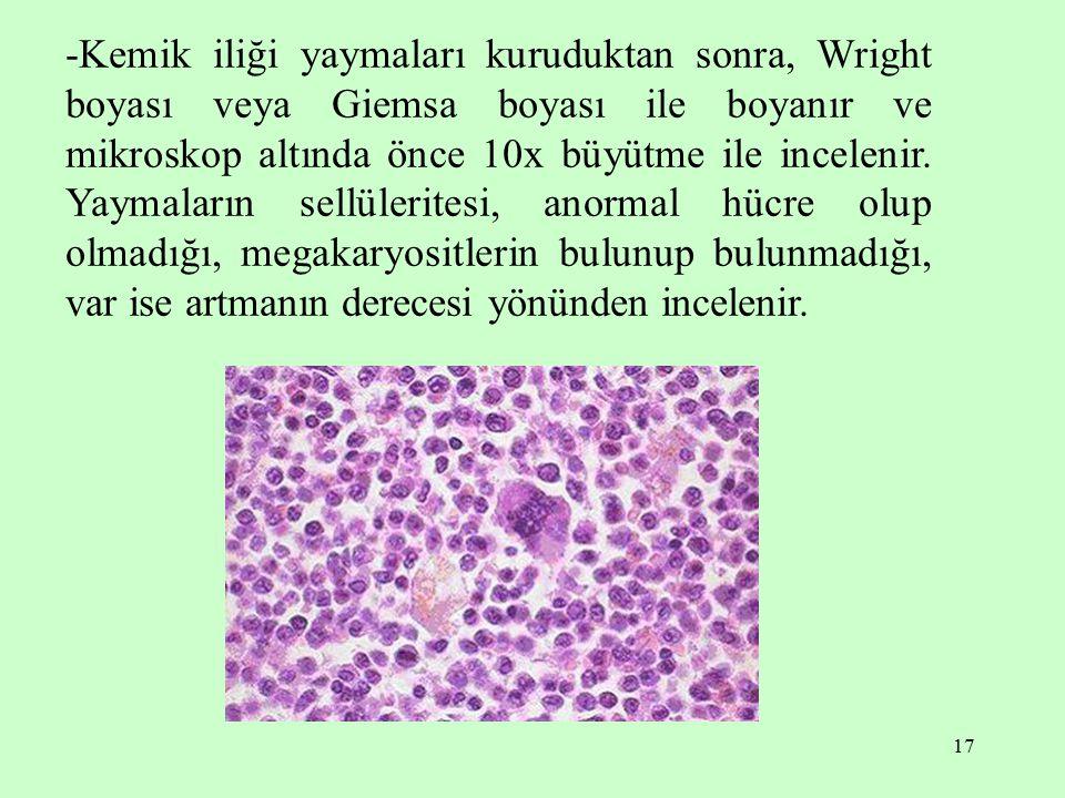 17 -Kemik iliği yaymaları kuruduktan sonra, Wright boyası veya Giemsa boyası ile boyanır ve mikroskop altında önce 10x büyütme ile incelenir. Yaymalar