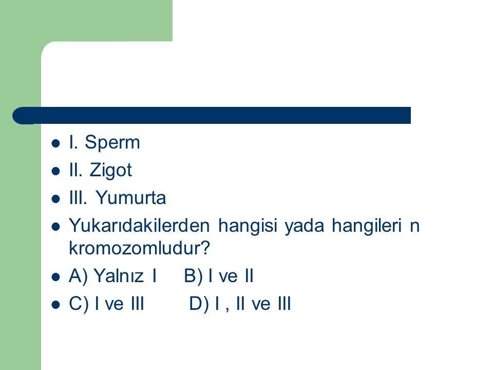 I. Sperm II. Zigot III. Yumurta Yukarıdakilerden hangisi yada hangileri n kromozomludur? A) Yalnız I B) I ve II C) I ve III D) I, II ve III