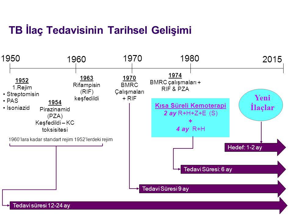 Yayma (+) Hastaların Takibi (yayma/kültür) Yeni Olgular Başlangıç Dönemi Sonunda (2.
