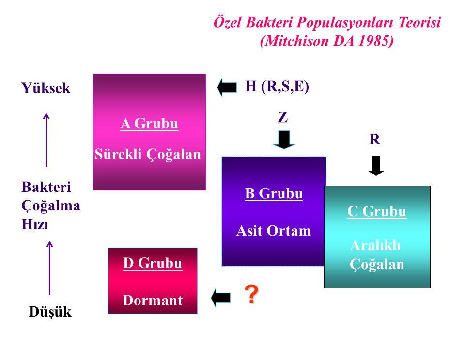 C A B Basil Sayısı 102345 Tedavi Ayları 6 Üç Topluluk Modeli Bakterisidal aktivite ve Sterilizan aktivite A Grubu: Hızlı Çoğalan Etkili İlaç: H>S>R>E B Grubu: Yavaş Çoğalan Etkili İlaç: Z>R>H C Grubu: Aralıklı ÇoğalanEtkili İlaç: R>H