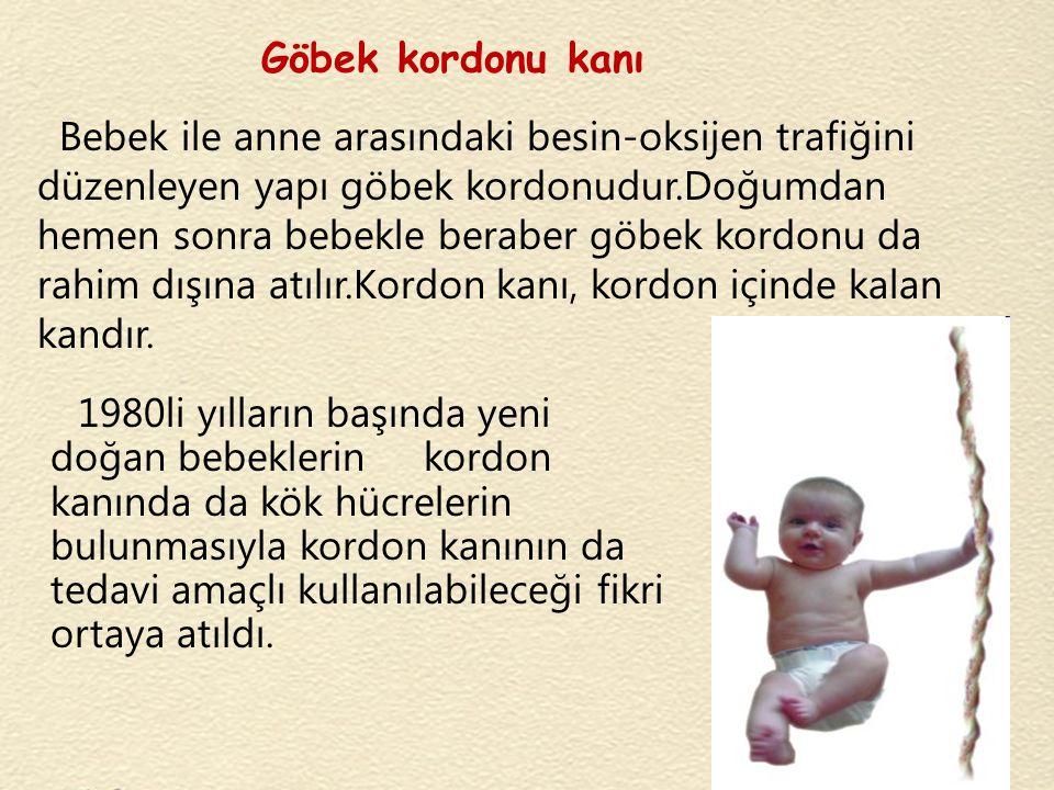 Göbek kordonu kanı Bebek ile anne arasındaki besin-oksijen trafiğini düzenleyen yapı göbek kordonudur.Doğumdan hemen sonra bebekle beraber göbek kordo