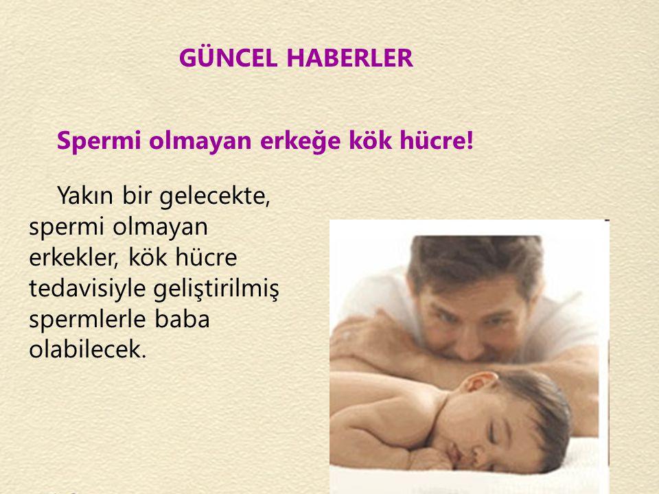 GÜNCEL HABERLER Spermi olmayan erkeğe kök hücre! Yakın bir gelecekte, spermi olmayan erkekler, kök hücre tedavisiyle geliştirilmiş spermlerle baba ola