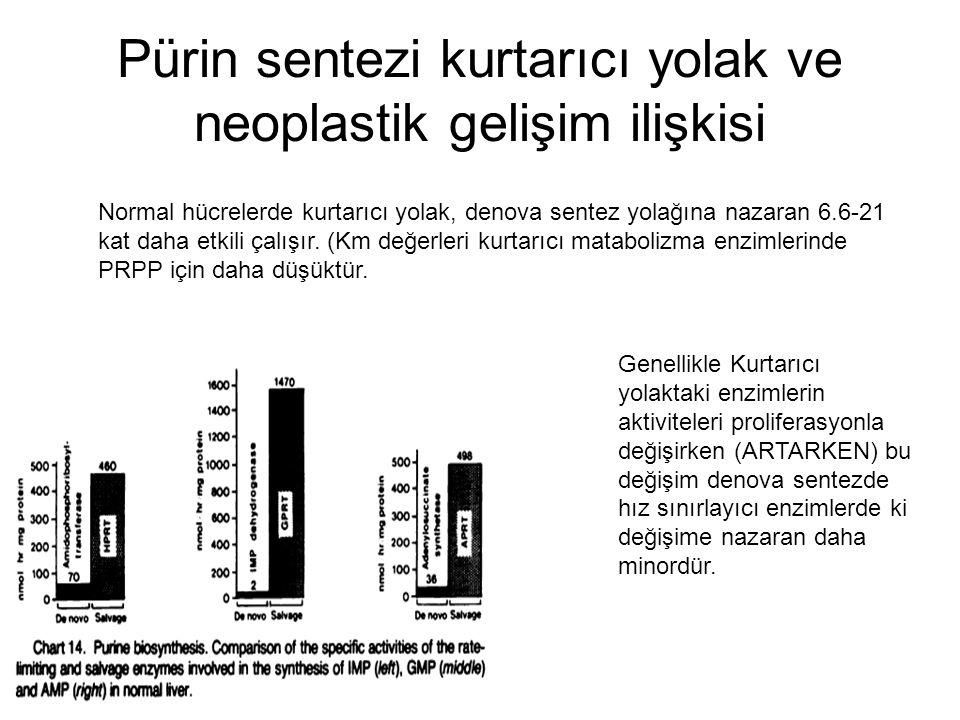 Pürin sentezi kurtarıcı yolak ve neoplastik gelişim ilişkisi Normal hücrelerde kurtarıcı yolak, denova sentez yolağına nazaran 6.6-21 kat daha etkili