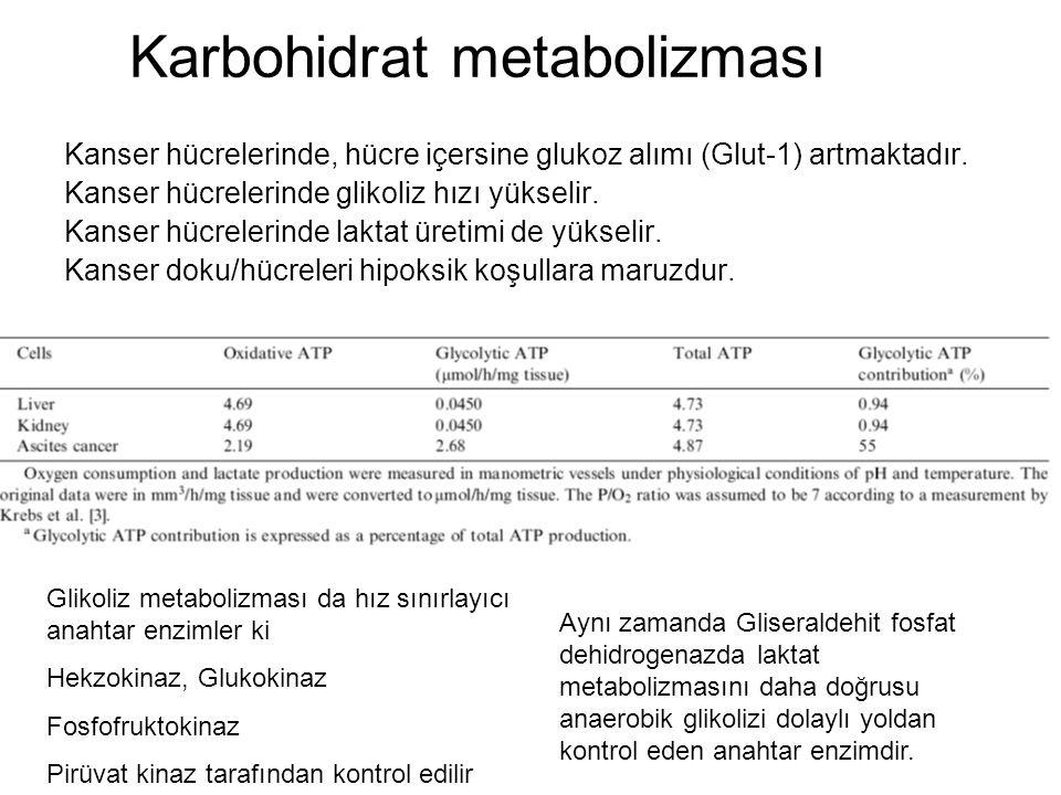 Karbohidrat metabolizması Kanser hücrelerinde, hücre içersine glukoz alımı (Glut-1) artmaktadır. Kanser hücrelerinde glikoliz hızı yükselir. Kanser hü