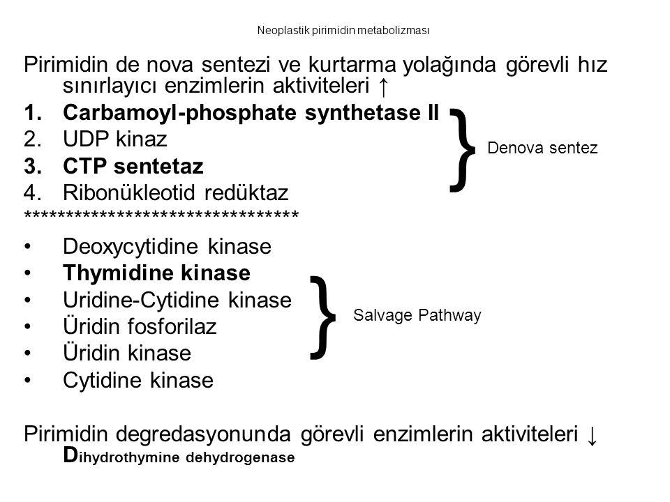 Neoplastik pirimidin metabolizması Pirimidin de nova sentezi ve kurtarma yolağında görevli hız sınırlayıcı enzimlerin aktiviteleri ↑ 1.Carbamoyl-phosp