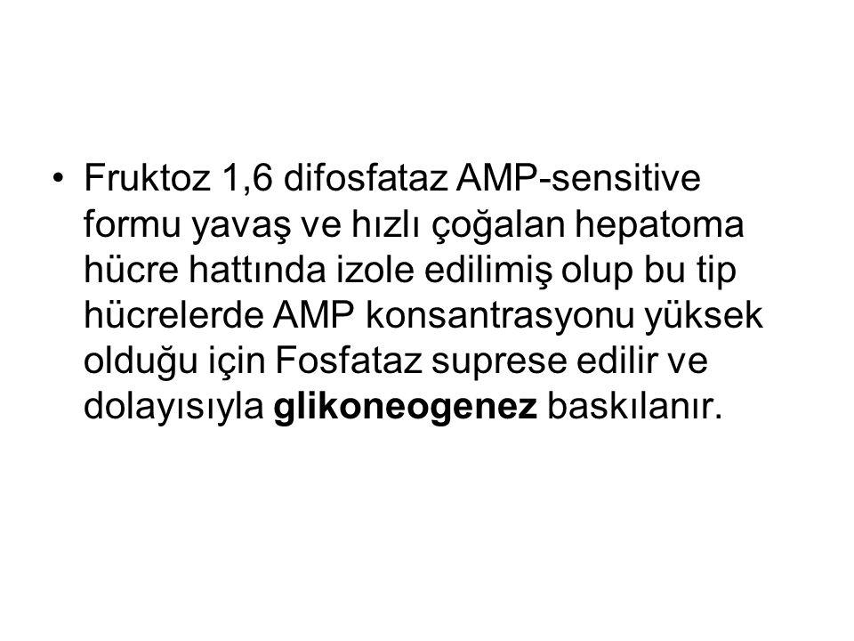Fruktoz 1,6 difosfataz AMP-sensitive formu yavaş ve hızlı çoğalan hepatoma hücre hattında izole edilimiş olup bu tip hücrelerde AMP konsantrasyonu yük