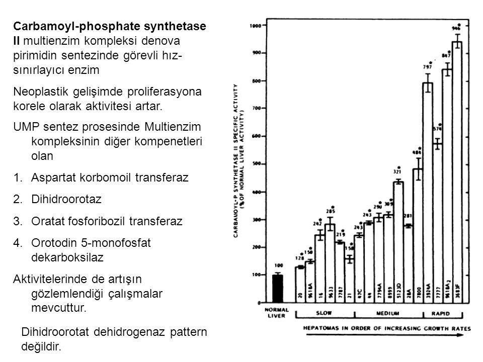 Carbamoyl-phosphate synthetase II multienzim kompleksi denova pirimidin sentezinde görevli hız- sınırlayıcı enzim Neoplastik gelişimde proliferasyona