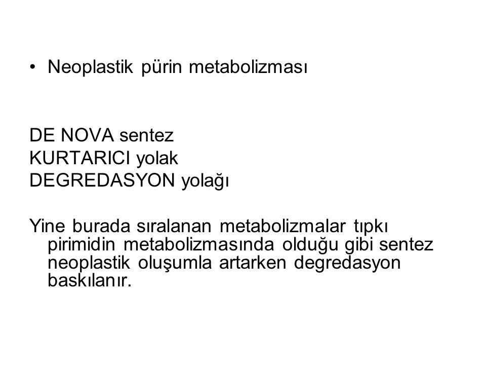 Neoplastik pürin metabolizması DE NOVA sentez KURTARICI yolak DEGREDASYON yolağı Yine burada sıralanan metabolizmalar tıpkı pirimidin metabolizmasında