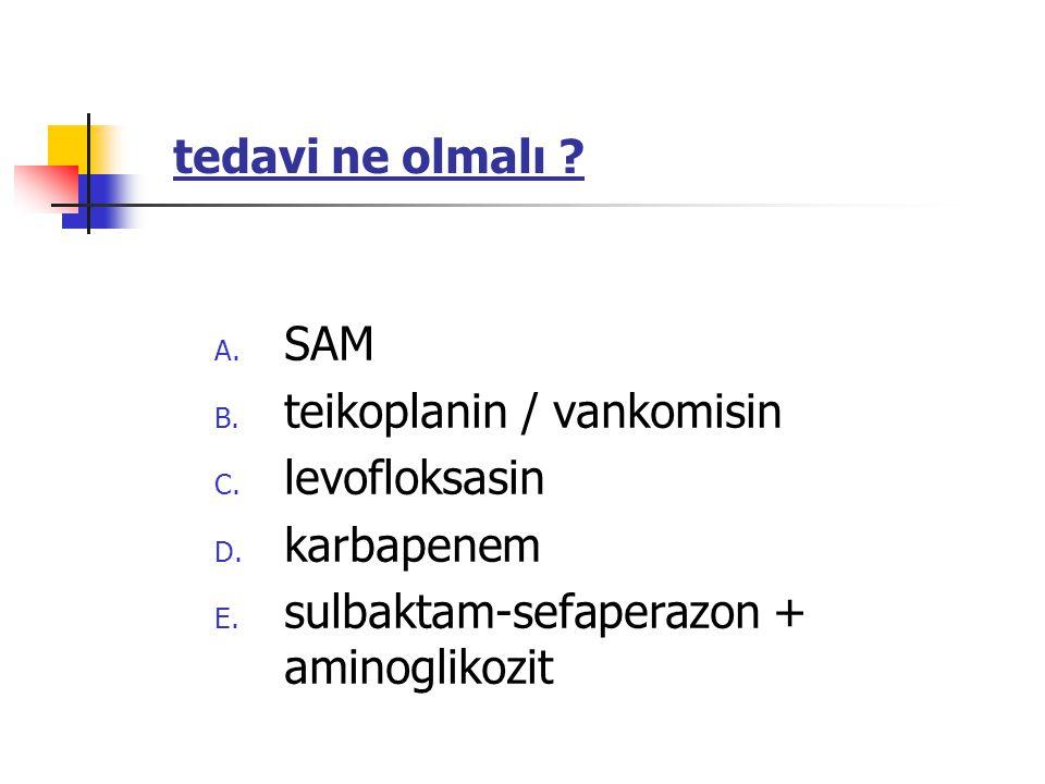 A. SAM B. teikoplanin / vankomisin C. levofloksasin D.