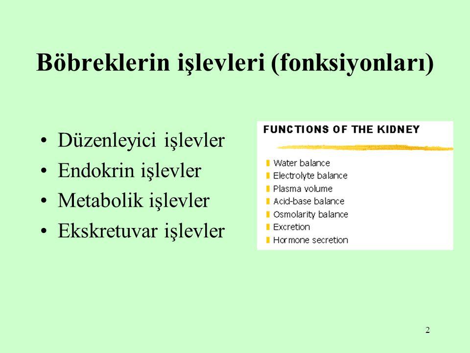 2 Böbreklerin işlevleri (fonksiyonları) Düzenleyici işlevler Endokrin işlevler Metabolik işlevler Ekskretuvar işlevler