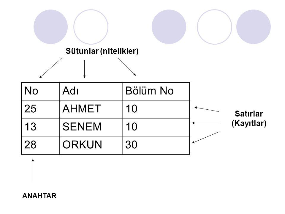 NoAdıBölüm No 25AHMET10 13SENEM10 28ORKUN30 Sütunlar (nitelikler) ANAHTAR Satırlar (Kayıtlar)