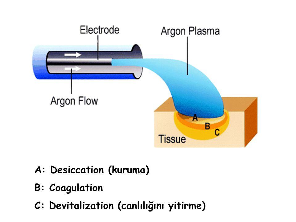 A: Desiccation (kuruma) B: Coagulation C: Devitalization (canlılığını yitirme)