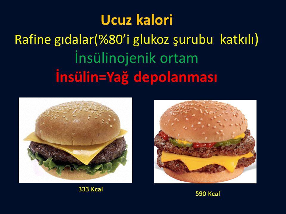 Ucuz kalori Rafine gıdalar(%80'i glukoz şurubu katkılı ) İnsülinojenik ortam İnsülin=Yağ depolanması 333 Kcal 590 Kcal