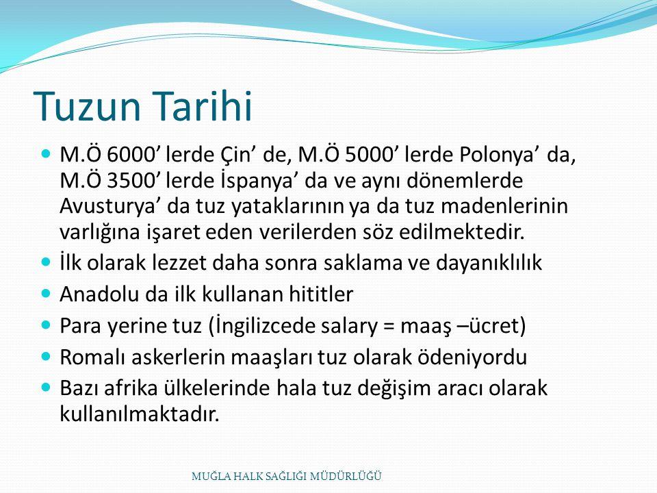 Tuzun Tarihi M.Ö 6000' lerde Çin' de, M.Ö 5000' lerde Polonya' da, M.Ö 3500' lerde İspanya' da ve aynı dönemlerde Avusturya' da tuz yataklarının ya da tuz madenlerinin varlığına işaret eden verilerden söz edilmektedir.