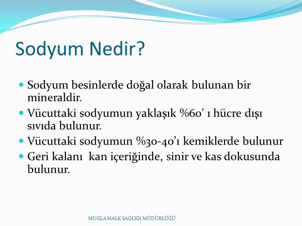 Sodyum Nedir.Sodyum besinlerde doğal olarak bulunan bir mineraldir.
