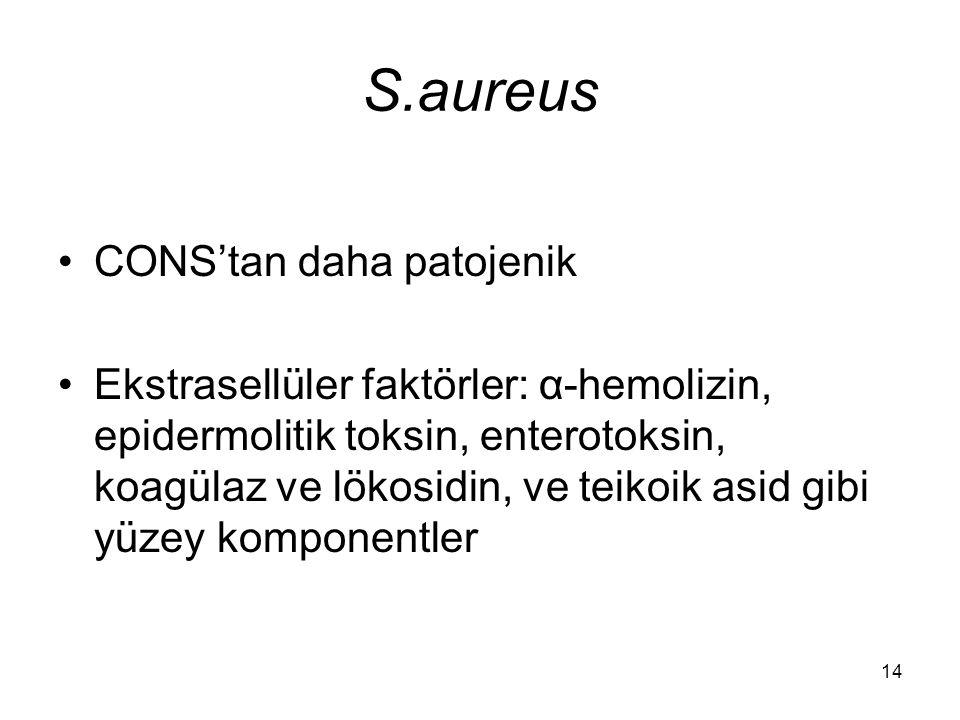 14 S.aureus CONS'tan daha patojenik Ekstrasellüler faktörler: α-hemolizin, epidermolitik toksin, enterotoksin, koagülaz ve lökosidin, ve teikoik asid