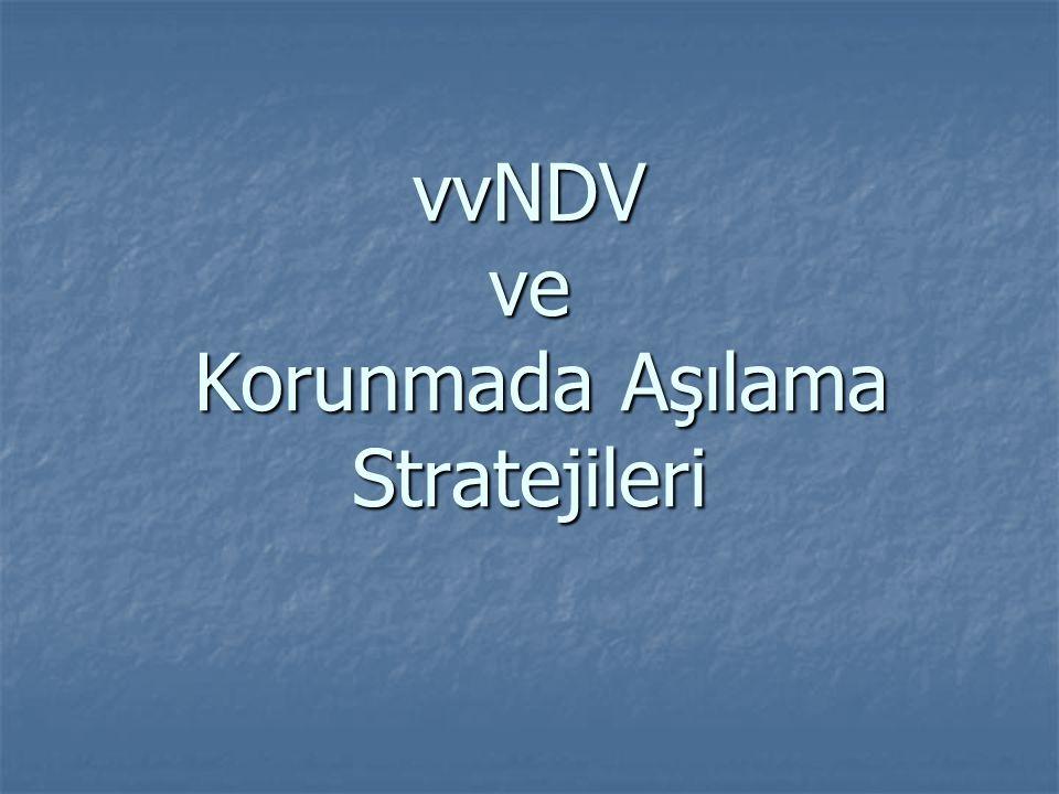 vvNDV ve Korunmada Aşılama Stratejileri