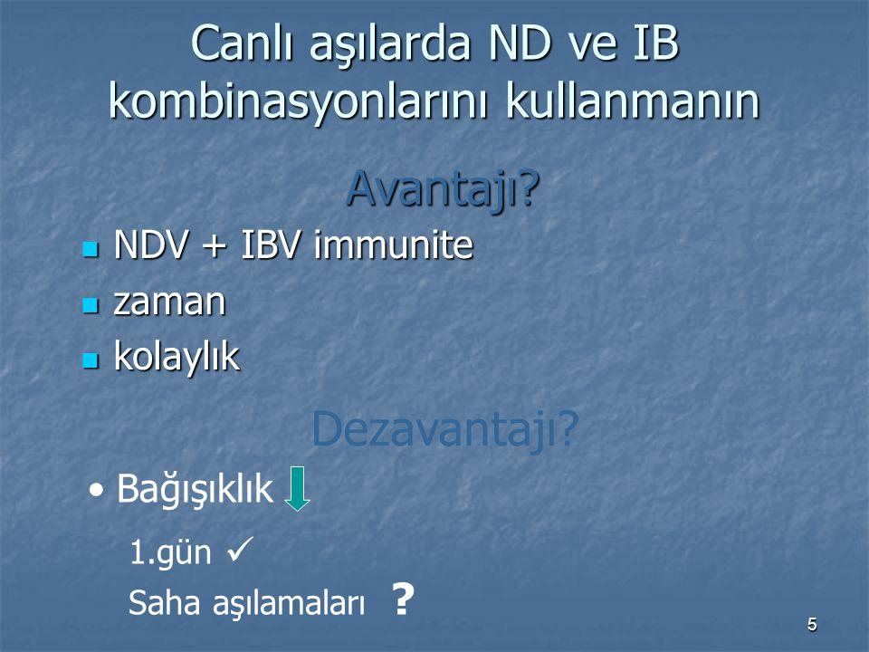 5 Canlı aşılarda ND ve IB kombinasyonlarını kullanmanın Avantajı.