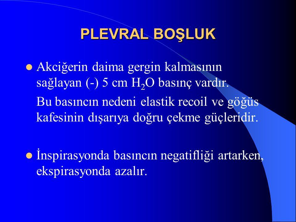 PLEVRAL BOŞLUK Akciğerin daima gergin kalmasının sağlayan (-) 5 cm H 2 O basınç vardır. Bu basıncın nedeni elastik recoil ve göğüs kafesinin dışarıya